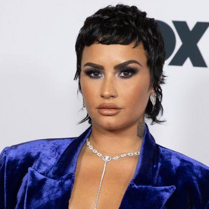 Demi Lovato szerint sértő a földönkívüliekre nézve, ha idegeneknek nevezzük őket