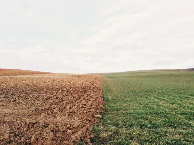 savanyú talaj meszezés